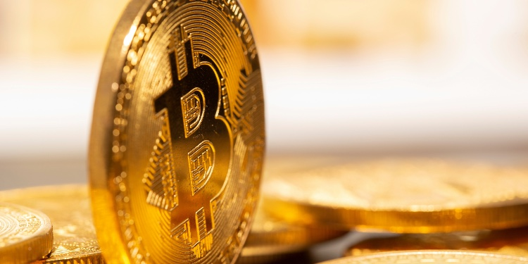 , Bitcoin is set to become electronic gold, expert claims