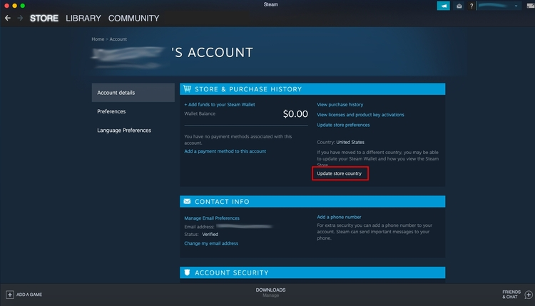 Steam account details