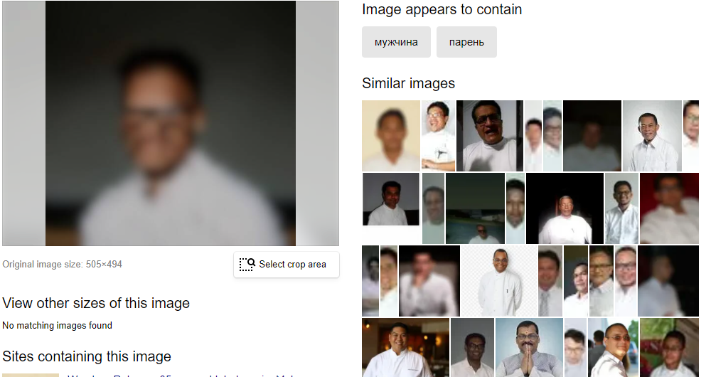 Uploading blurred profile image on Yandex search